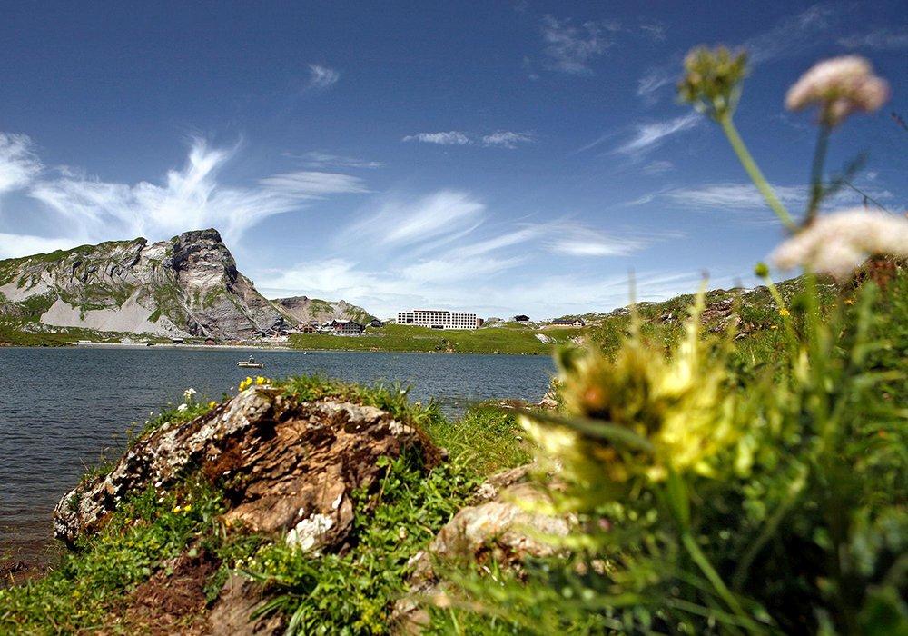 כפר הנופש פרוט על רקע האגם וההרים בקיץ