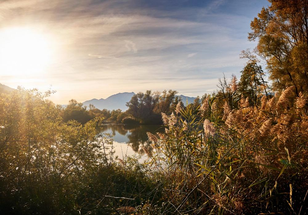 שמורת הטבע בולה די מגדינו בטיצ'ינו