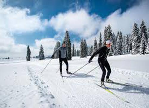 זוג גולשים בהייקינג סקי אלפיני