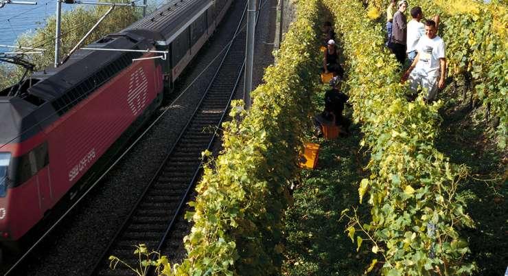 הרפתקאת הרכבות השוויצרית