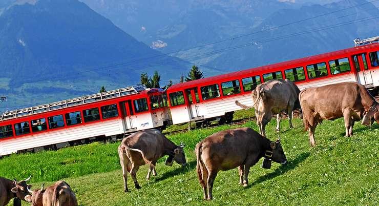 טיול רכבות הרים במרכז שוויץ