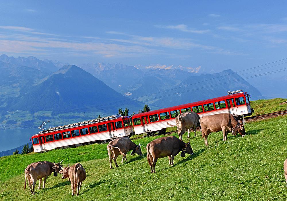 רכבת ההרים אל פסגת הר ריגי