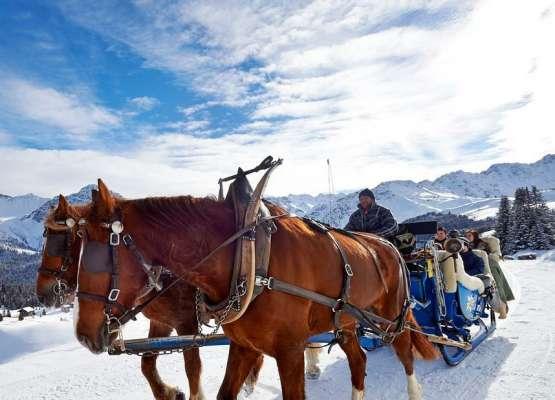 רכיבת סוסים בארוזה