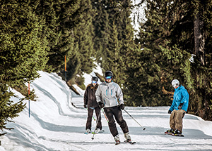 גולשי סקי וסנובורד בוורבייר